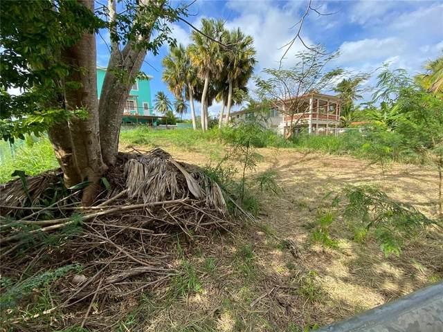 Bo. Bajuras, ISABELA, PR 00662 (MLS #PR9091135) :: Team Bohannon Keller Williams, Tampa Properties