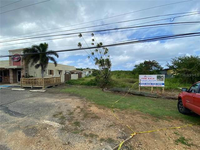 Bo. Aguacate, AGUADILLA, PR 00603 (MLS #PR9091138) :: Bustamante Real Estate