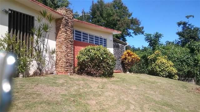 2 Florida Afuera, BARCELONETA, PR 00617 (MLS #PR9091176) :: Griffin Group