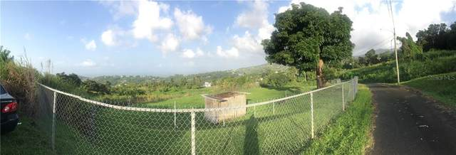 Address Not Published, RIO GRANDE, PR 00745 (MLS #PR9091230) :: Lockhart & Walseth Team, Realtors