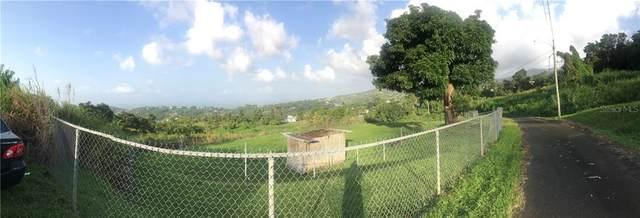 Address Not Published, RIO GRANDE, PR 00745 (MLS #PR9091230) :: Bustamante Real Estate