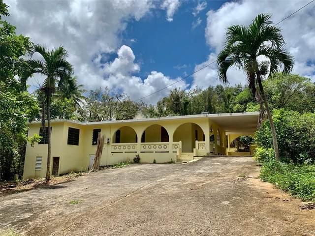 644 Road Pugnado Afuera, VEGA BAJA, PR 00693 (MLS #PR9091262) :: Baird Realty Group