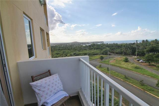 1 Turquoise, VEGA ALTA, PR 00692 (MLS #PR9091314) :: The Duncan Duo Team
