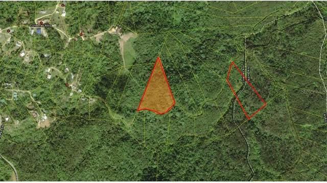 Culebra Alto, CAYEY, PR 00737 (MLS #PR9091407) :: Charles Rutenberg Realty