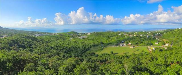 200 Route 997, VIEQUES, PR 00765 (MLS #PR9091423) :: Heckler Realty