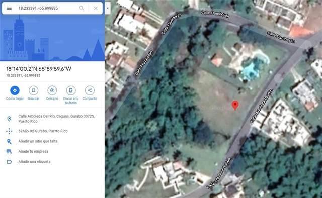 Calle Arboleda del R Urb. Gran Vista, GURABO, PR 00778 (MLS #PR9091541) :: Homepride Realty Services