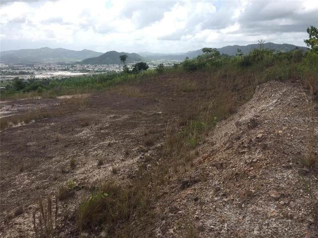 Lot 17, Montes Lands, Sector Santa Barbara Rincon Ward, GURABO, PR 00778 (MLS #PR9091574) :: The Heidi Schrock Team