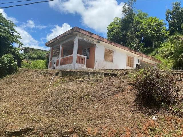 Parc 4 Dalia St. Sr791 Km0.5 Int Naranjo Ward, COMERIO, PR 00782 (MLS #PR9091676) :: Cartwright Realty