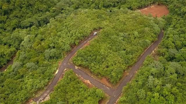 PR 2 km 129.5 Bo. Vi Pr 2 Km 129.5 Bo. Victoria, AGUADILLA, PR 00603 (MLS #PR9091954) :: Bustamante Real Estate