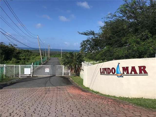 Urb. Lindo Mar Urb. Lindo Mar, RIO GRANDE, PR 00745 (MLS #PR9091996) :: Zarghami Group
