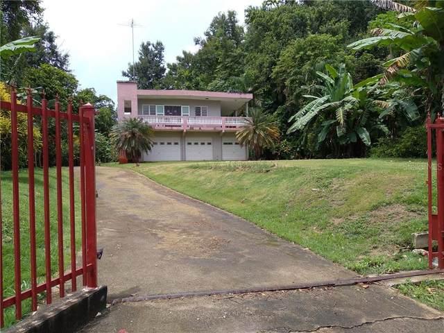 Parc. 75 Com. Rio Nuevo, DORADO, PR 00646 (MLS #PR9092080) :: Everlane Realty