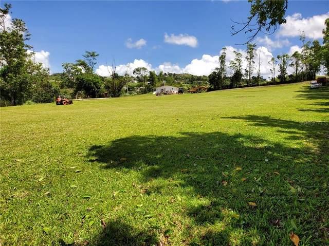Land Barranquitas Bo. Quebradillas, BARRANQUITAS, PR 00794 (MLS #PR9092088) :: MVP Realty