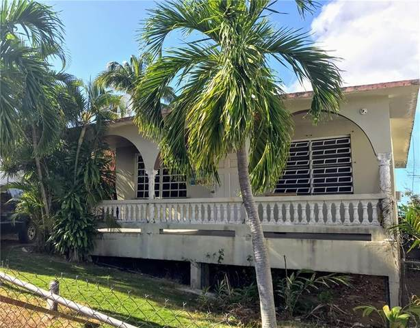 61 Calle Ambar, VIEQUES, PR 00765 (MLS #PR9092112) :: Carmena and Associates Realty Group