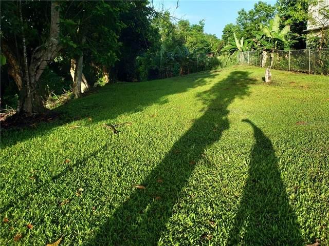 PR 155 Bo. Barahona, MOROVIS, PR 00687 (MLS #PR9092265) :: BuySellLiveFlorida.com