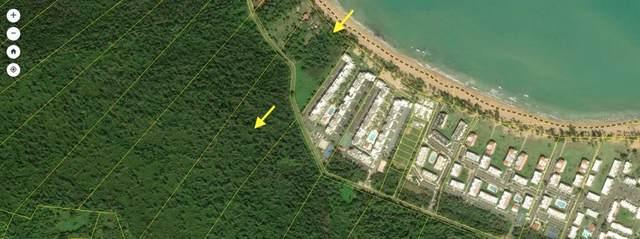 Carr. 968 Camino Playa Las Picuas Km 2.1, RIO GRANDE, PR 00745 (MLS #PR9092315) :: Keller Williams on the Water/Sarasota