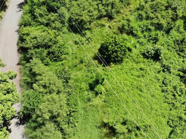 PR 102 Km. 15.6 Bo. Miradero Parabueyon Dev., CABO ROJO, PR 00623 (MLS #PR9092331) :: EXIT King Realty