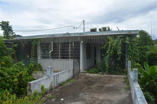 146 Km 27.5 Bo. Cordillera, CIALES, PR 00638 (MLS #PR9092358) :: Young Real Estate