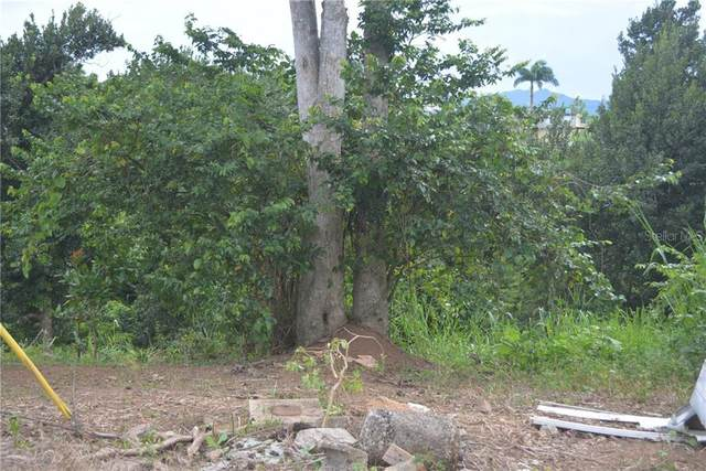 Carr 149 Km 19.5 Int Bo. Pesas, CIALES, PR 00638 (MLS #PR9092363) :: Young Real Estate