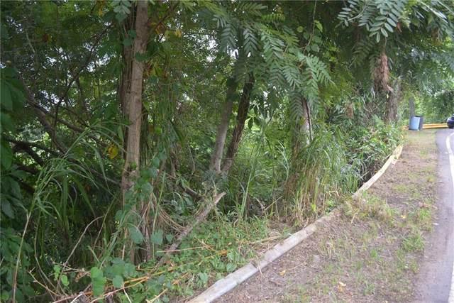 Carr 149 Km 21.1 Bo. Pesas, CIALES, PR 00638 (MLS #PR9092365) :: Young Real Estate