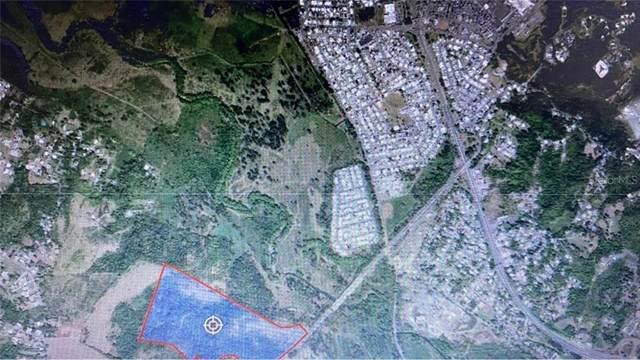 CARR. PR-100 KM 1.3 Bo. Plan Bonito Finca Garcia, CABO ROJO, PR 00623 (MLS #PR9092402) :: Vacasa Real Estate