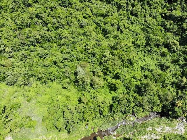 PR 378 Bo. Sierra, GUAYANILLA, PR 00656 (MLS #PR9092477) :: Bustamante Real Estate