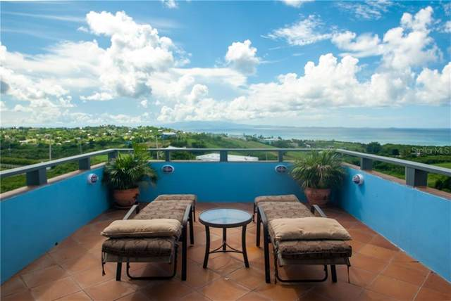 22 Bastimento Heights Lane, VIEQUES, PR 00765 (MLS #PR9092510) :: Realty One Group Skyline / The Rose Team