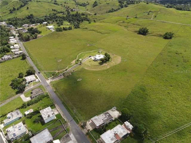 Pr-31, RIO BLANCO, PR 00744 (MLS #PR9092514) :: Baird Realty Group