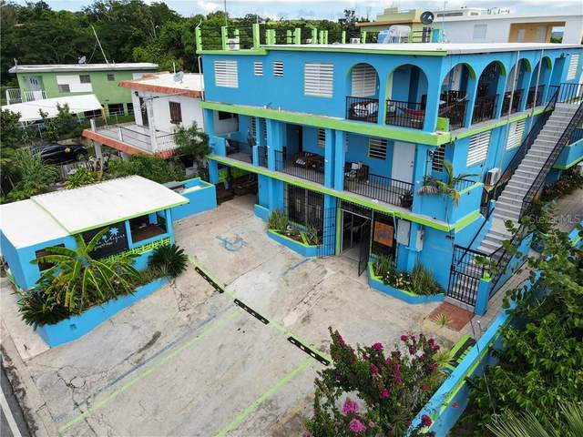 297 Flamboyan, VIEQUES, PR 00765 (MLS #PR9092556) :: Zarghami Group