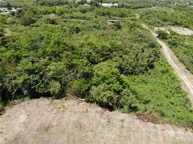 PR 368 KM 8.4 Bo Susua Alta, YAUCO, PR 00698 (MLS #PR9092568) :: Positive Edge Real Estate