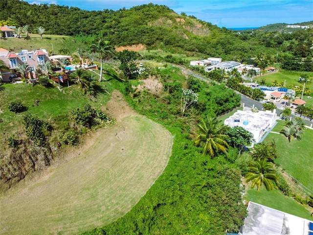 Lote 8-A Bo. Quebrada, FAJARDO, PR 00738 (MLS #PR9092742) :: The Brenda Wade Team