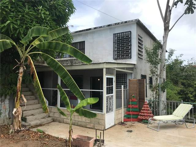 22 Q Street, VIEQUES, PR 00765 (MLS #PR9092798) :: Realty One Group Skyline / The Rose Team