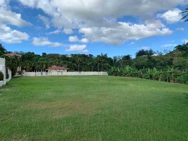 711 AzorãƒâN, MAYAGUEZ, PR 00680 (MLS #PR9092823) :: Your Florida House Team