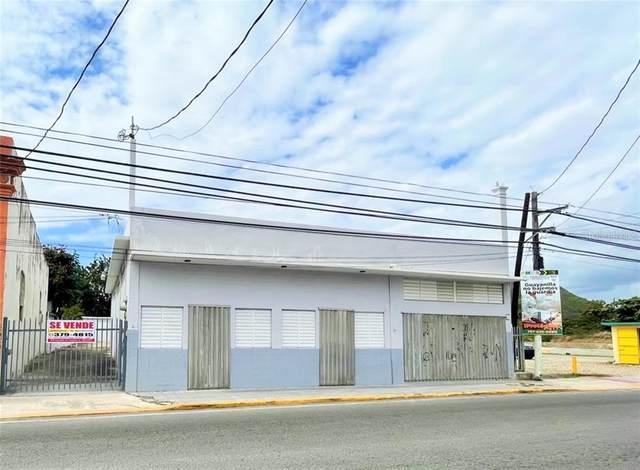BO. PUEBLO St Luis Muãƒâ€˜Oz Rivera #64, GUAYANILLA, PR 00656 (MLS #PR9092837) :: CGY Realty