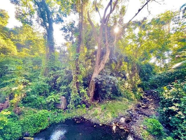 LOTE E Quebrada Honda, GUAYANILLA, PR 00656 (MLS #PR9092962) :: Griffin Group