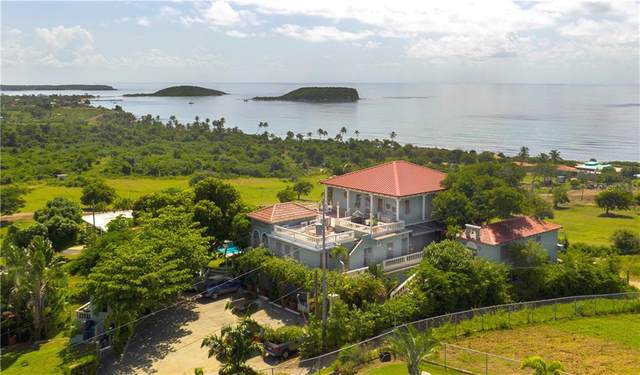 1 Hacienda Tamarindo, VIEQUES, PR 00765 (MLS #PR9092977) :: RE/MAX Marketing Specialists