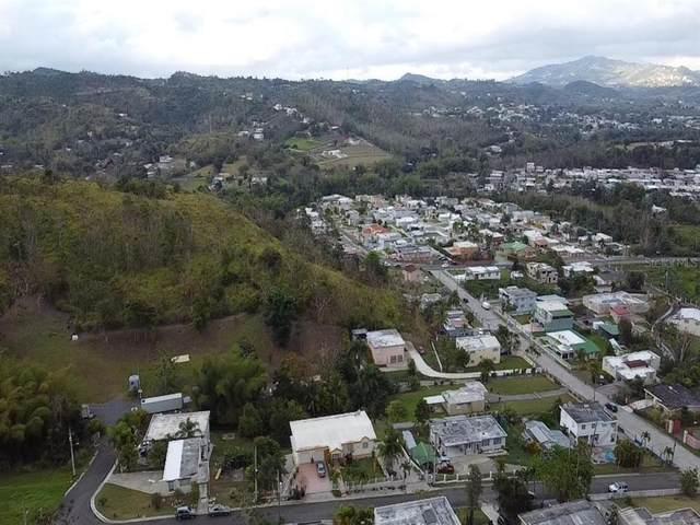Parc 50 Finca 8451 Praderas De Laplata, CAYEY, PR 00736 (MLS #PR9093164) :: Armel Real Estate