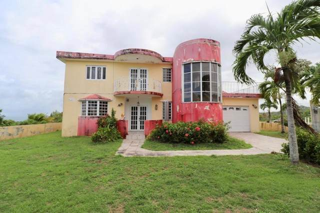 SR 906 Guayanes, YABUCOA, PR 00767 (MLS #PR9093166) :: The Hesse Team