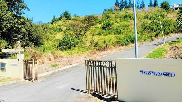 Urb. Vistas Del Rodadero, YAUCO, PR 00698 (MLS #PR9093172) :: Bob Paulson with Vylla Home