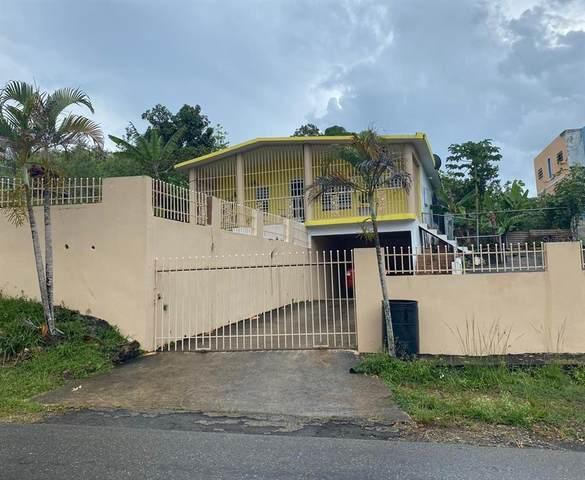 Bo. Bajadero Sec. Arenalejos Carr 656 Km 1.9, ARECIBO, PR 00612 (MLS #PR9093283) :: New Home Partners
