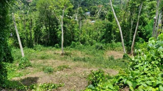 MOROVIS, PR 00687 :: Vacasa Real Estate