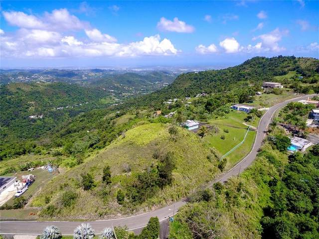 3.1 Km Route 9957, CANOVANAS, PR 00729 (MLS #PR9093331) :: The Hustle and Heart Group