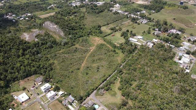 Road 119, CAMUY, PR 00627 (MLS #PR9093396) :: Armel Real Estate