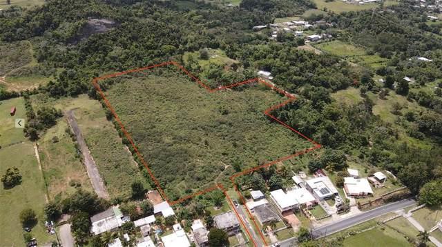 Road 119, CAMUY, PR 00627 (MLS #PR9093397) :: Armel Real Estate