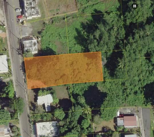 Jobos Pr-466 Km 6.3, ISABELA, PR 00662 (MLS #PR9093431) :: Armel Real Estate
