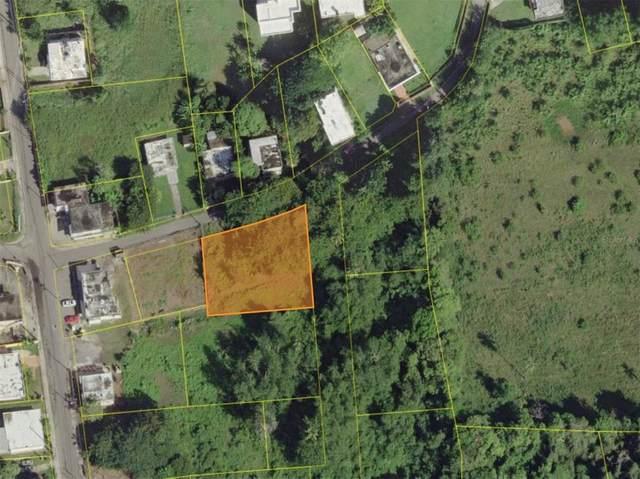 Jobos Carr Pozo Dulce, ISABELA, PR 00662 (MLS #PR9093432) :: Armel Real Estate