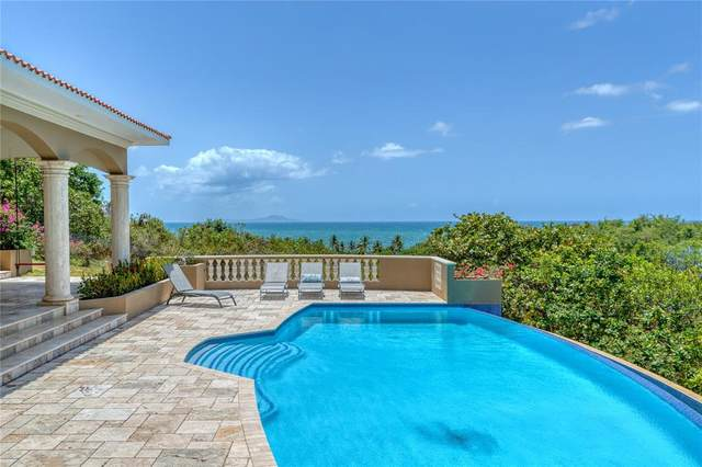 9 Shell Castle Road, HUMACAO, PR 00791 (MLS #PR9093433) :: The Hustle and Heart Group
