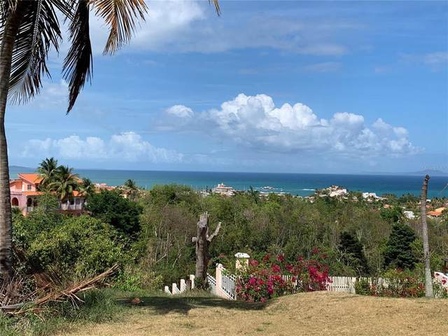 Roble Valley #24, HUMACAO, PR 00791 (MLS #PR9093468) :: Your Florida House Team