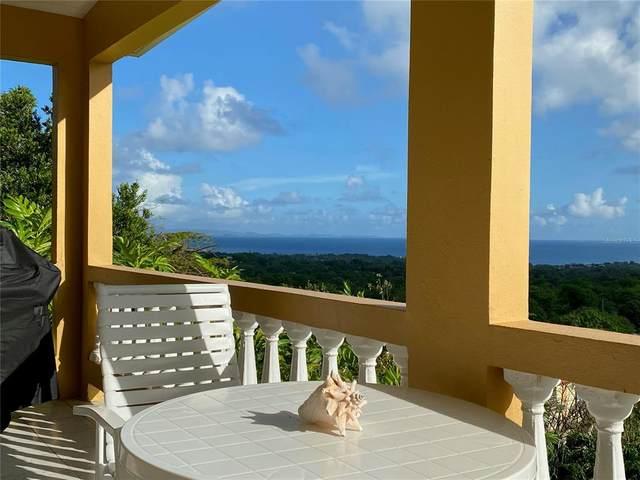 76 SW Los Chivos, VIEQUES, PR 00765 (MLS #PR9093665) :: Vacasa Real Estate