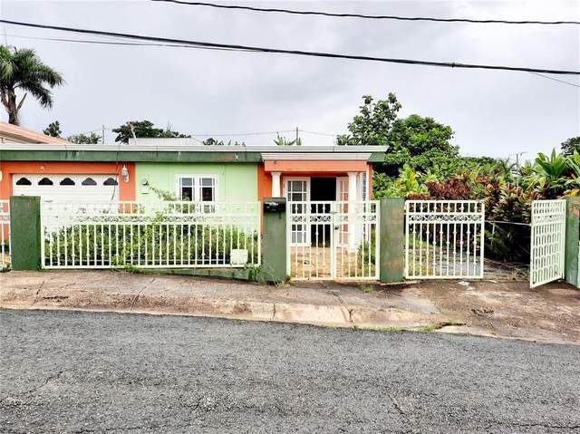 Las Casitas, Jaguas- A Street A12, CIALES, PR 00638 (MLS #PR9093784) :: Vacasa Real Estate