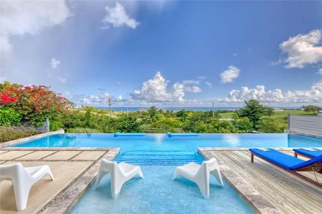 673 Villa Borinquen, VIEQUES, PR 00765 (MLS #PR9093796) :: Everlane Realty